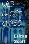 Wild Ghost Chase Cover